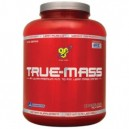 True Mass 2640gr Chocolate Bsn